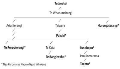 TutakekaiWhakapapa1